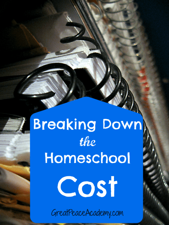 How much does homeschool cost? Breaking down the costs at Great Peace Academy