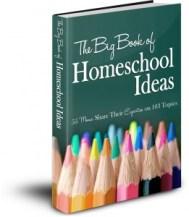 Big Book of Ideas Final Cover 3D