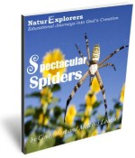 Spectacular Spiders 3D Cover