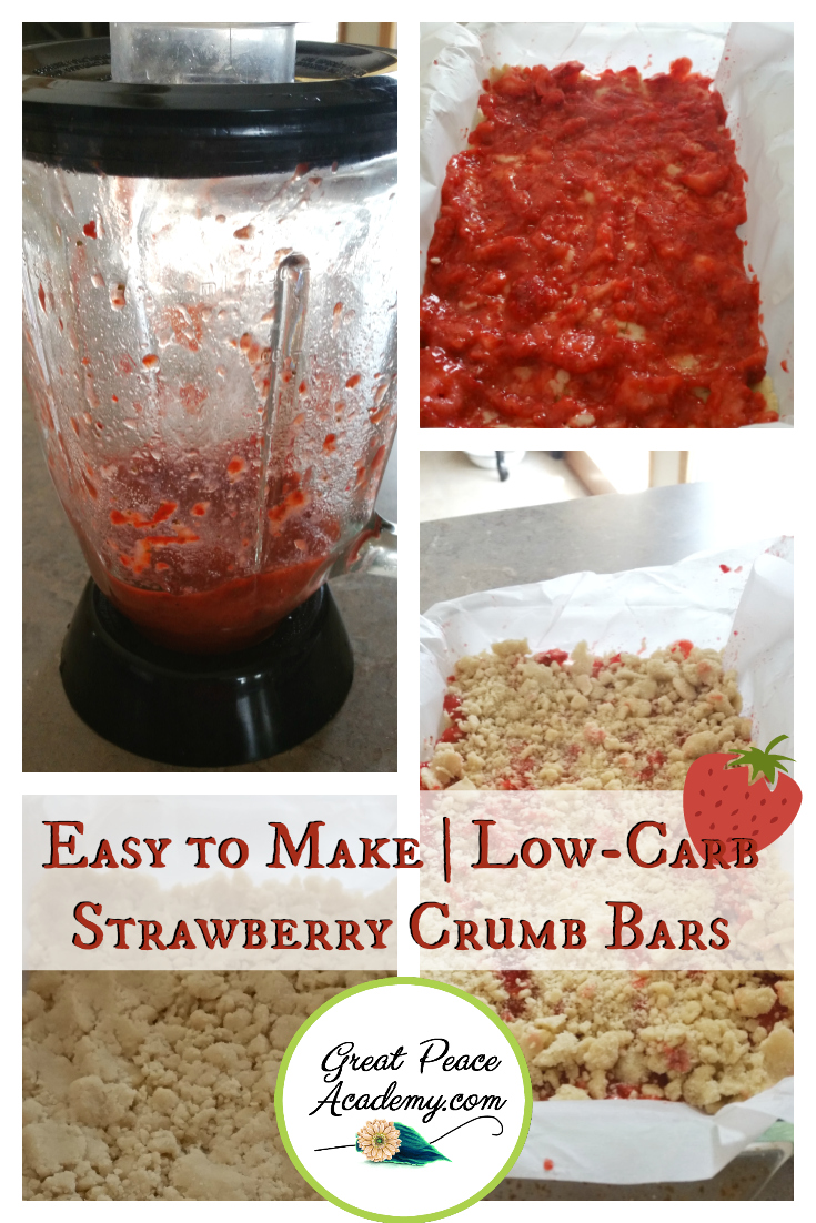 Low Carb Strawberry Crumb Bar Recipe | GreatPeaceAcademy.com