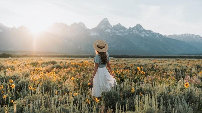 Tetons-Flowers-Banner