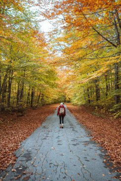 New England Fall Road Trip Ultimate Itinerary Renee Roaming White Mountains New Hampshire 2