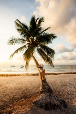 Make the Most of Your Trip to Tulum Mexico A Comprehensive Guide Playa Pariso Palm Tree Renee Roaming
