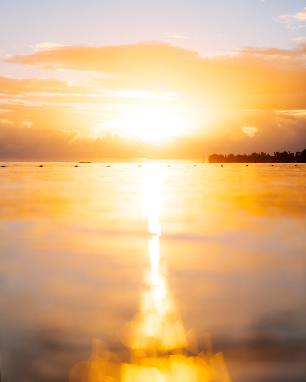 The Islands of Tahiti Moorea Manava Resort Sunrise