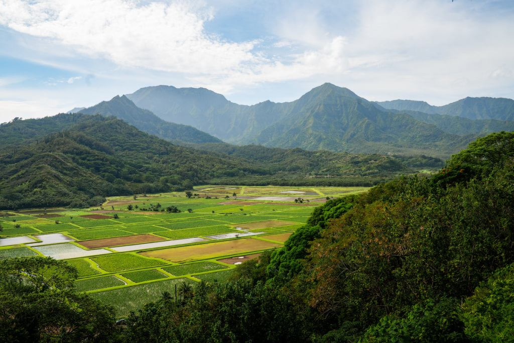 9 Must-Do Kauai Outdoor Adventures - Hanalei Valley - Renee Roaming