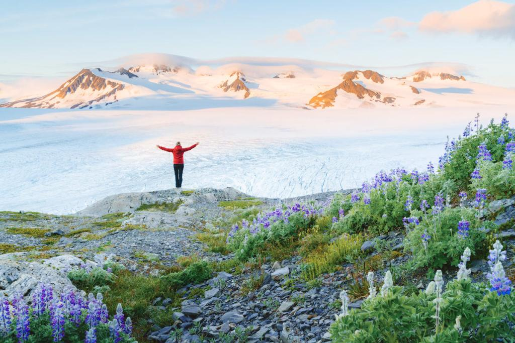 The Ultimate Guide to Exploring Kenai Fjords National Park - Sunrise Harding Icefield Exit Glacier Wildflowers