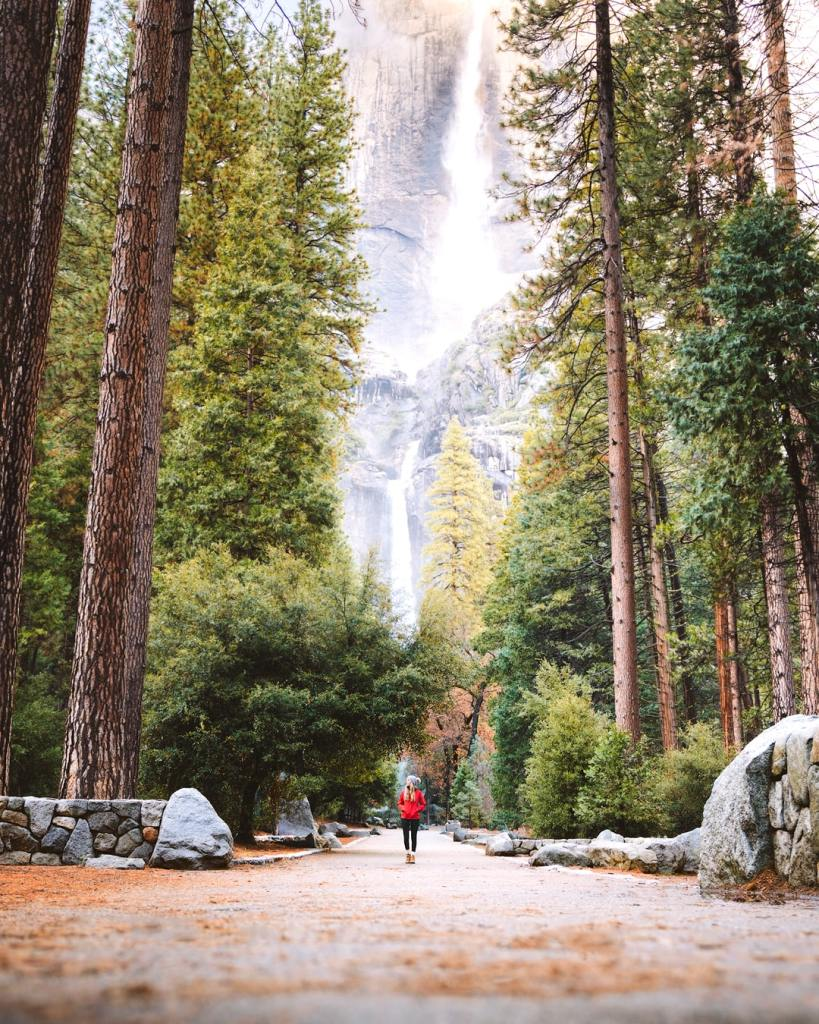 12 Best National Parks to Visit in Winter - Yosemite National Park Lower Yosemite Falls