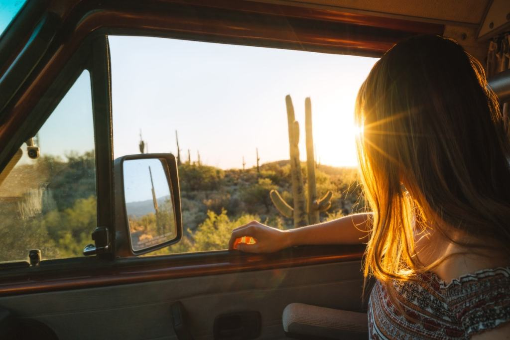 Best National Parks to Visit in Spring - How To Get To Saguaro National Park