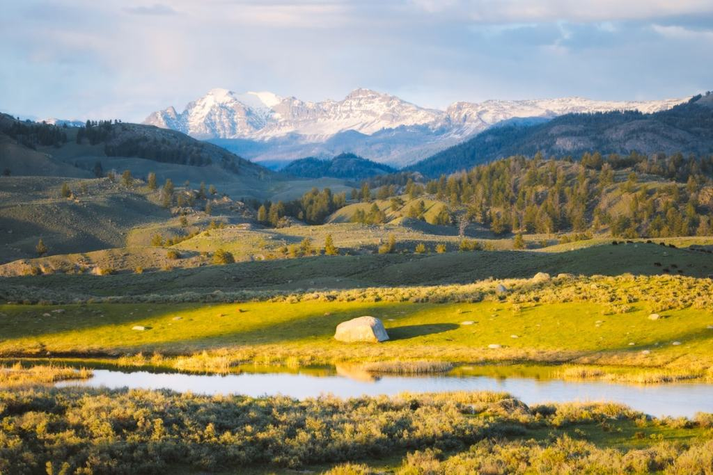 Best National Parks to Visit in Spring - Yellowstone National Park Spring Travel Guide - Lamar Valley