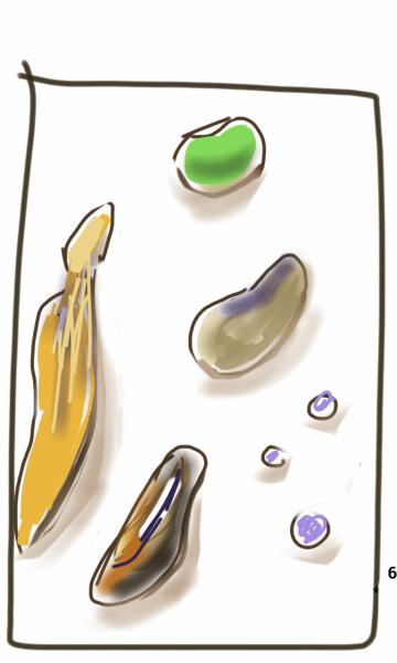 L2 Drawing 6