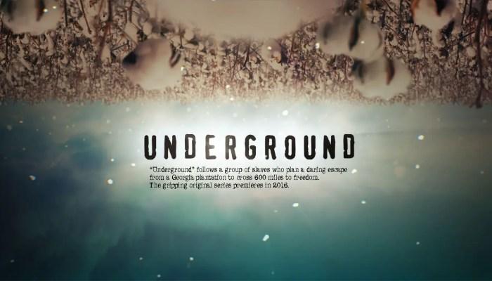 underground cancelled or renewed