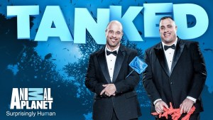 tanked season 10 renewed (aka season 6)