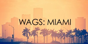 WAGS: Miami Cancelled Or Renewed For Season 2?