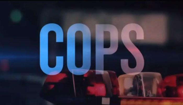 Cops Revived ?