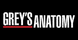 Grey's Anatomy Season 15 On ABC: Cancelled or Renewed (Release Date)
