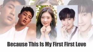 Netflix Announces New Series My First First Love
