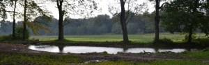 Beekdalwandeling @ Informatiecentrum Renkums Beekdal | Renkum | Gelderland | Nederland