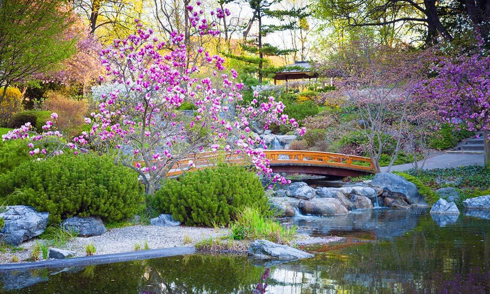 comment transformer son jardin en un