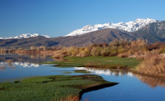 Find boat rentals near Ogden Utah