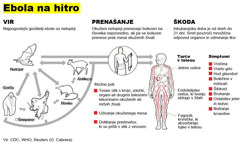 Ebola na kratko | Reuters