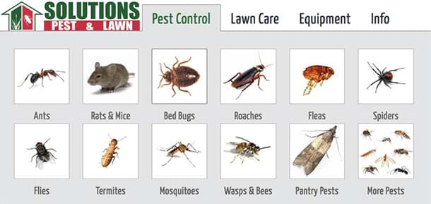 Diy Pest Control Supply