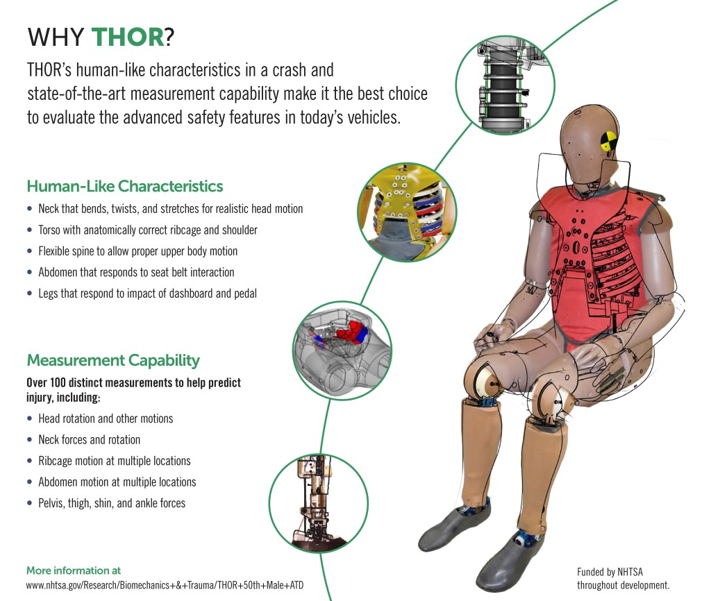 "The NHTSA's new crash dummy ""THOR"" is shown in this graphic. (Provided by NHTSA)"