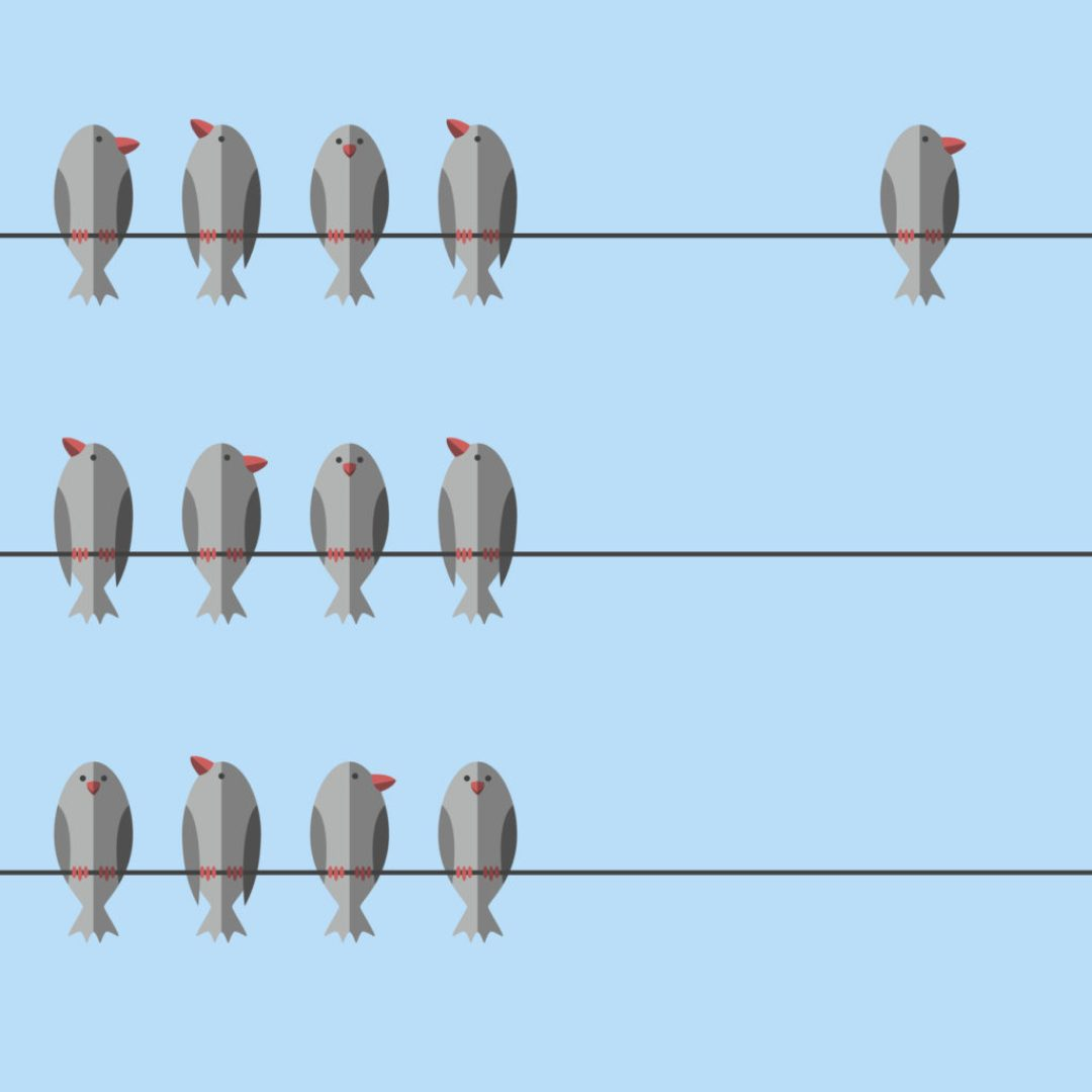 Unique free independent bird, Μόνη στο Σπίτι Νο2- Η απόλυτη Ευτυχία
