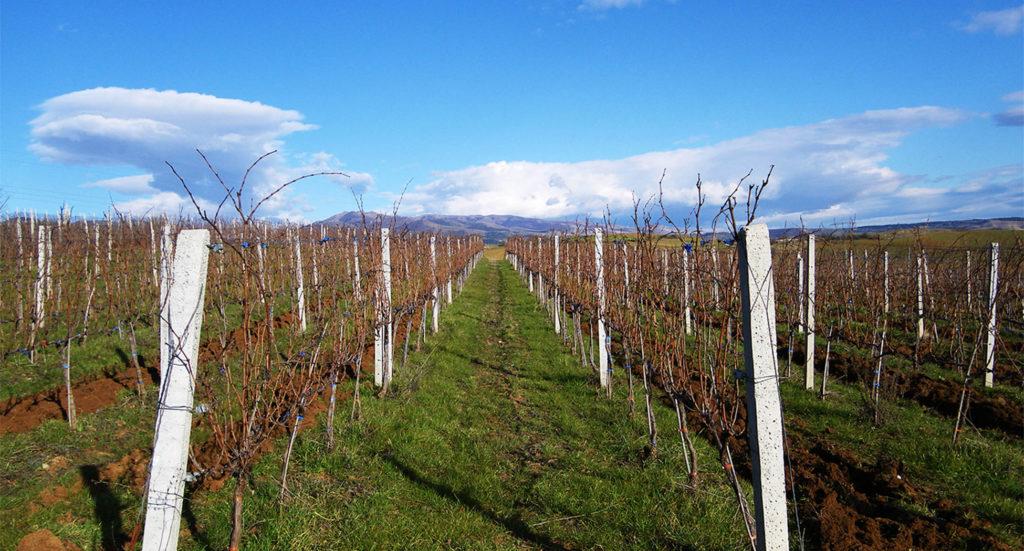 Εκδρομή και κρασί… Τι άλλο να ζητήσει κανείς; Βόρεια Ελλάδα -Μέρος 1ο-