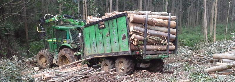 remolque forestal usado