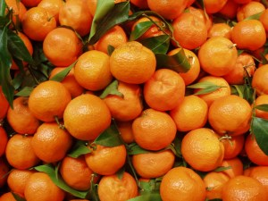 Oranges in Sicily, Italy