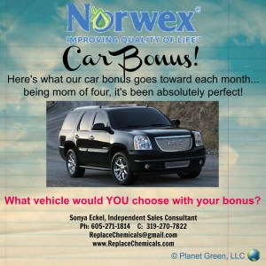 I'd be honored to work closely to help YOU earn your car bonus, too!