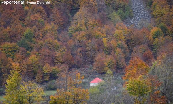 Lugina e Valbonës gjatë stinës së vjeshtës. Fotografuar më 29 tetor 2016. Foto: Ivana Dervishi/BIRN