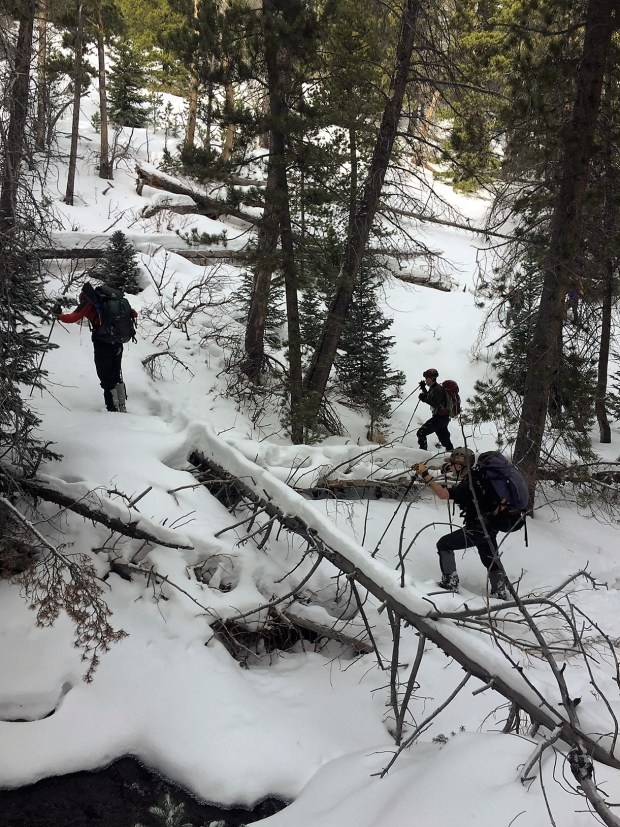 Searchers traverse the Boulder Brook area of Rocky Mountain National Park while looking for Micah Tice on Nov. 30, 2018. Remains believed to be the missing man were found July 5, 2019. (Courtesy Rocky Mountain National Park)