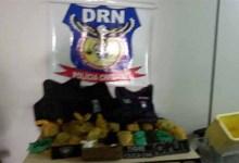 Photo of Polícia apreende mais de 18 kg de drogas durante ocupação