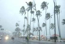 Photo of ALERTA! Previsão para Alagoas é de chuvas intensas e rajadas de ventos até sábado (30)