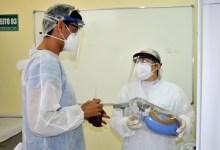 Photo of Município estabelece regulamentação para manejo de corpos de vítimas da Covid-19