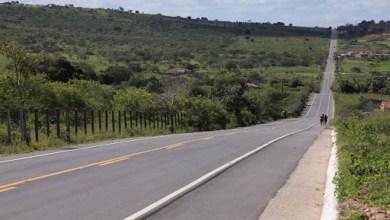 Photo of Governador assina ordem de serviço para construção da AL-130 entre Carneiros e Santana