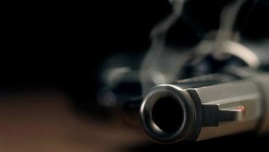 Photo of Venda de armas de fogo chega a quase 74 mil unidades no 1º semestre