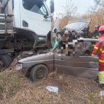 Motorista de caminhão teria desviado de animais na pista quando ocorreu o acidente