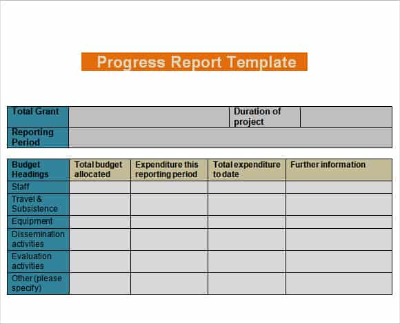 Daily Progress Report Templates  Daily Report Templates