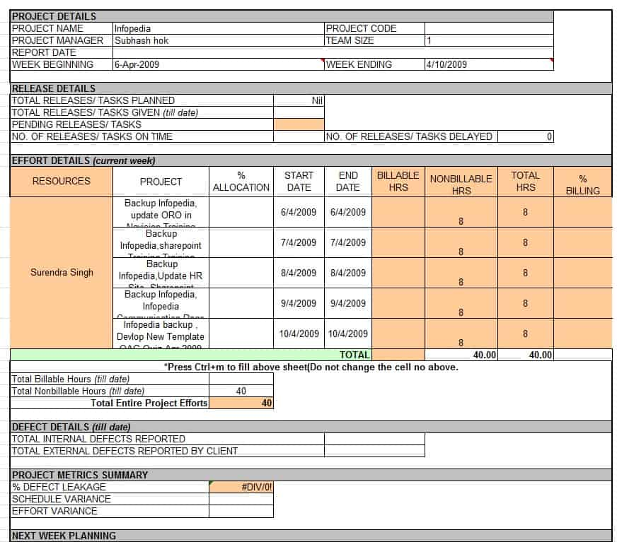 It Project Report Template project management status reports – Monthly Project Status Report Template