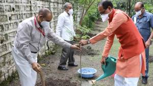 Chief Minister Shri Chouhan planted a plant of Munga
