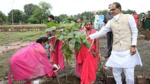 Chief Minister Shri Chouhan planted saplings with the members of women self-help groups