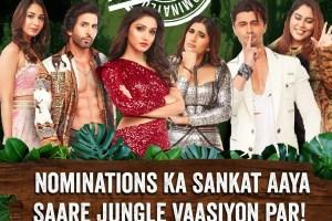 Bigg Boss 15: Afsana Khan, Donal Bisht, Akasa, Ieshaan Sehgaal, Vishal Kotian, Vidhi Pandya Get Nominated
