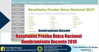 Resultados Prueba Única Nacional, Nombramiento Docente 2019