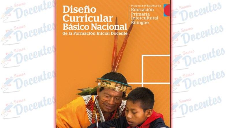 Diseño Curricular Básico Nacional de la Formación Inicial Docente : programa de estudios de Educación Primaria Intercultural Bilingüe