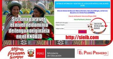 SIEIB: Sistema para ver el nivel de dominio de lengua originaria en el RNDBLO (sieib.com)[Consulta si te encuentra en el RNDBLO]