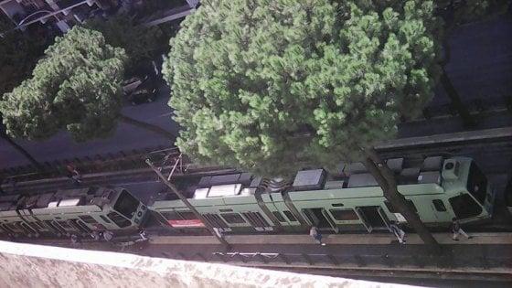 Roma, scontro tra tram in via Prenestina: passeggeri feriti