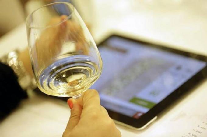 Vino, anche il bianco fa bene: un bicchiere al giorno protegge cuore e reni