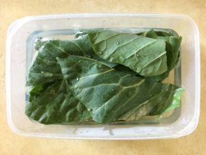 collard greens for bearded dragons